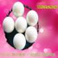 陶瓷氧化锆球-氧化锆球-砂磨机磨珠-球磨机磨球